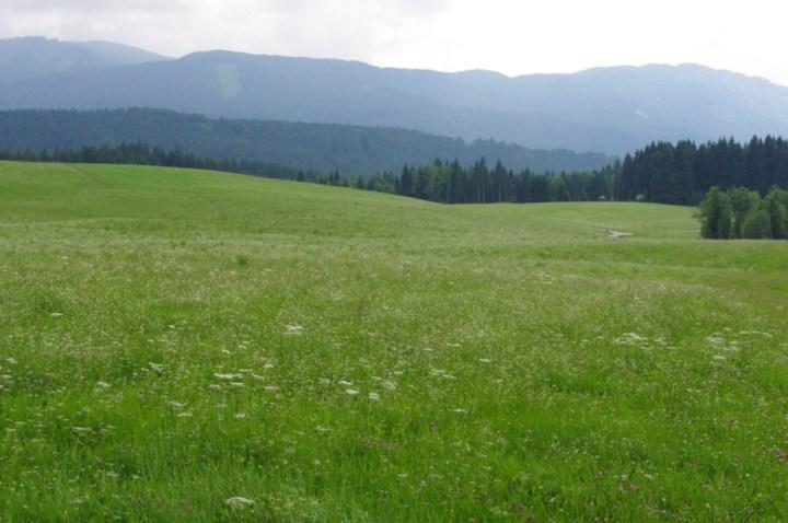 Wies Church - Wieskirche - Germany - surrounding fields