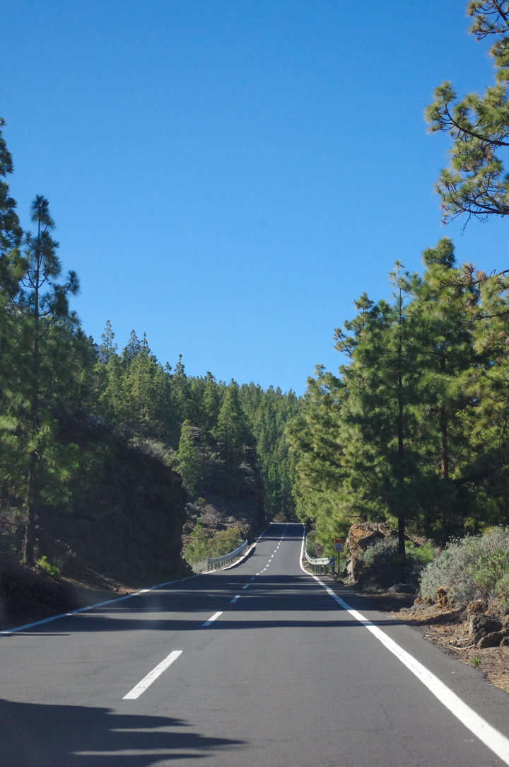 Tenerife - Spain - Mount Teide - Pico del Teide - National Park - road