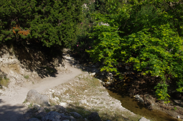 The Avakas Gorge - Cyprus - path by the river