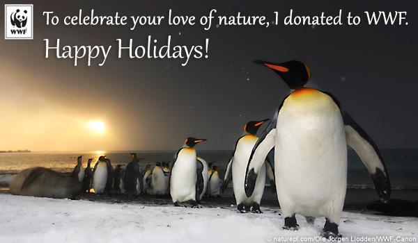 WWF - holidayecard_penguin