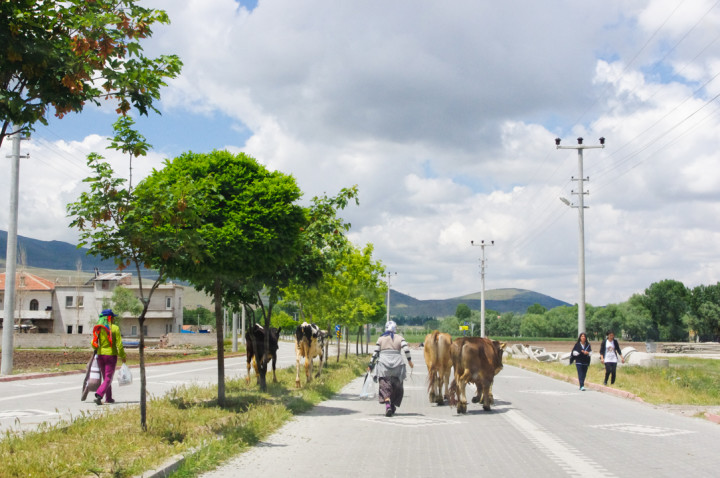 Somewhere in Turkey - Visit roadtripsaroundtheworld.com