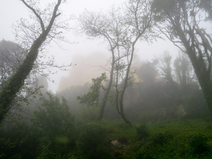 The Pena Palace in the fog - Sintra, Portugal - Learn more on roadtripsaroundtheworld.com