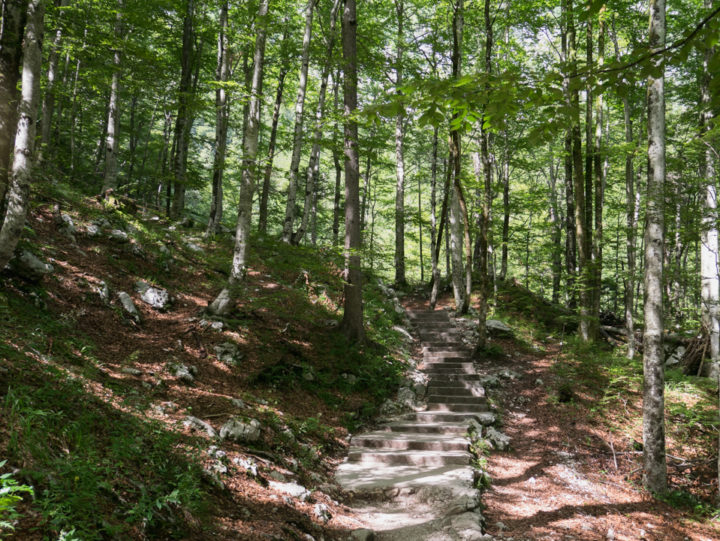 The stair path to the Savica waterfall near lake Bohinj, Slovenia - learn more on RoadTripsaroundtheWorld.com