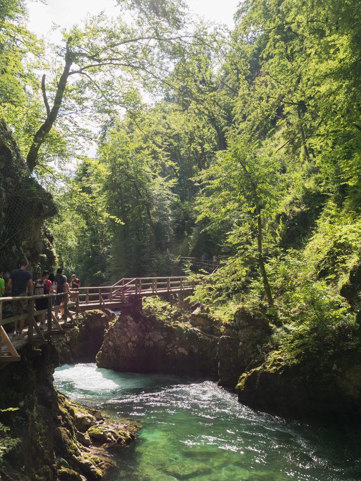 The trail through the Vintgar Gorge in Slovenia - Learn more on www.RoadTripsaroundtheWorld.com