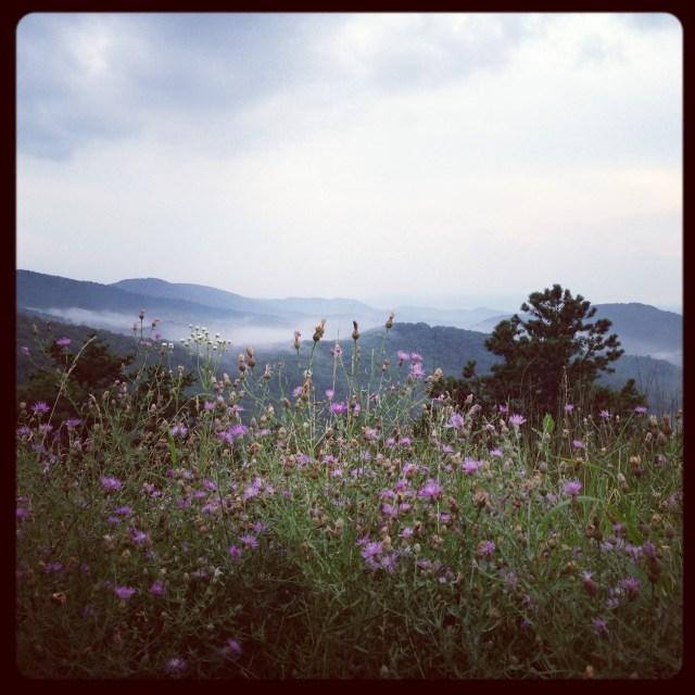 Shenandoah National Park: Views Along Skyline Drive