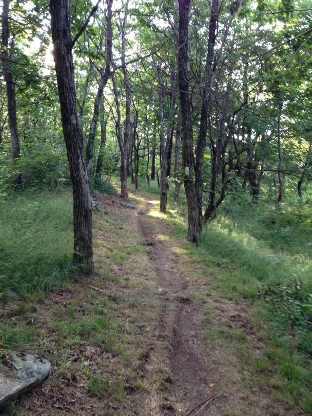 Shenandoah National Park: AT Hiking in Shenandoah