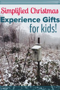 Experience Gifts for Kids: Simplified Christmas - Road Trip the World