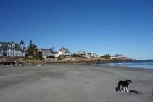 Good Harbor Beach - North