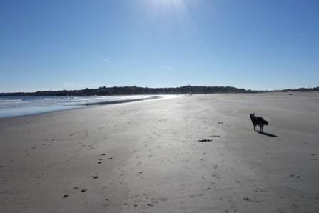 Good Harbor Beach - South