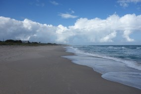 Nice beach and gorgeous Florida weather