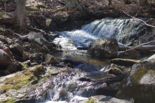 Small waterfalls in the stream