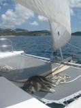 Darwin sailing in St. Martin, Caribbean