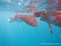 Swimming with manta rays behind our sailboat in Tahuata, FP