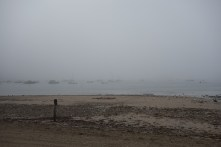 Not much to see in the bay...