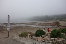 Misty Seal Harbor
