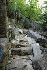 Steps, built by Waldron Bates, the path maker, help with the descend