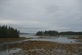 Entering the national park part of Schoodic Peninsula