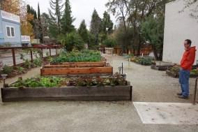 Community garden for veterans