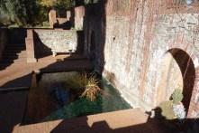 Landscaped gardens around the cottage
