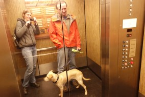 What we think is Jaxx' first elevator ride