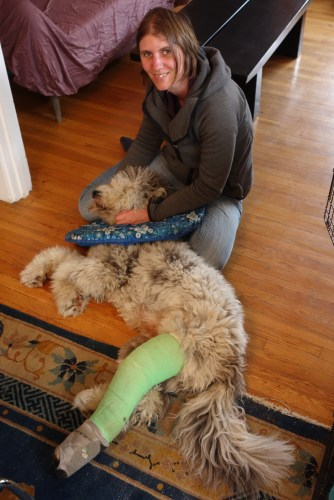 Petting Hank, who craved attention, but couldn't get a lot, because of his injury