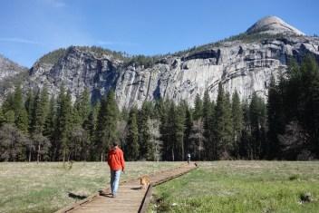 Boardwalk in the valley