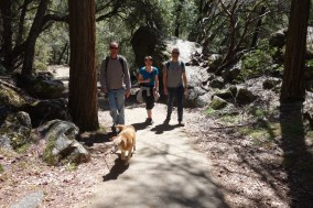 Walking to Yosemite Falls