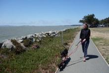 Walk on the Emeryville peninsula