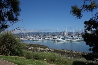 Mark and I lived in this marina in Emeryville for five months on our first sailboat