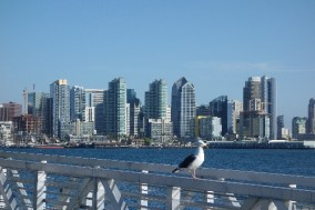 San Diego skyline seen from Harbor Island