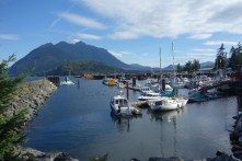 Sayward Harbor