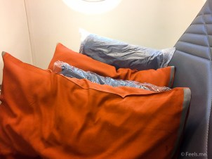 Singapore Airlines PVG SIN Premium Economy Large pillow and blanket