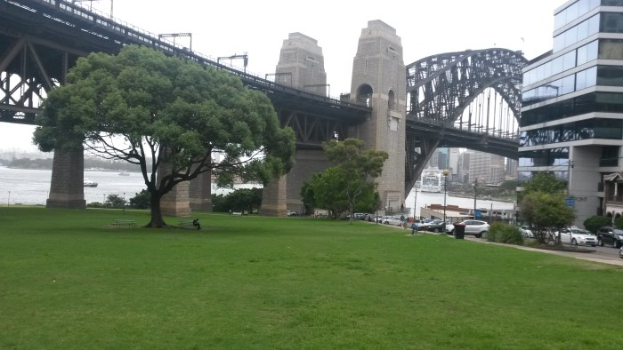 The view from outside our apartment in Milsons Point, Australia!