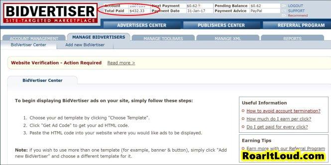 BidVertiser payment proof $432 review