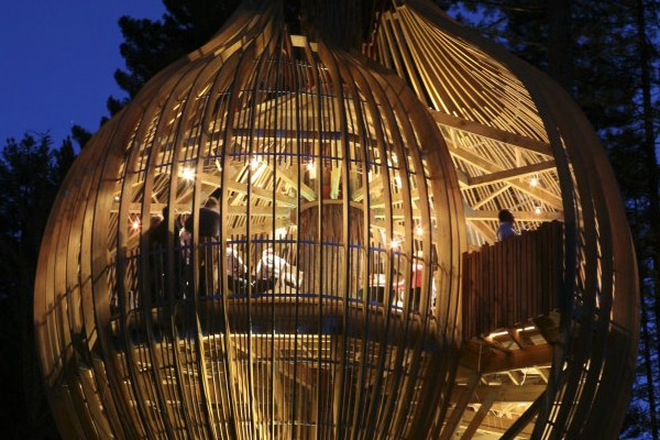 Restaurant Zealand New Treehouse Yellow