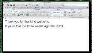 MS Word editing screen