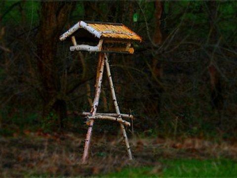 vogelhaus birkenholz vogelhaus-modelle