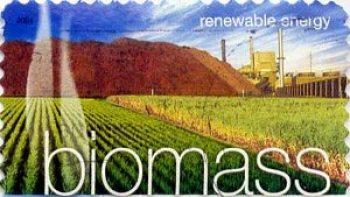 biomassa_-_vozobnavlyaemij_istochnik_energii_resheniya_ahwi_prinoth_po_sboru_i_obrabotke_biomassi-3