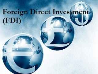 foreign direct investment-743688