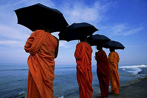 Buddhist monks watching the Indian Ocean, Colombo, island of Sri Lanka, Asia