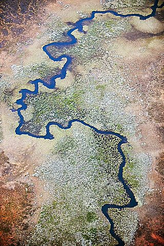 River meanders in wetland, aerial view, Lappland, Sweden