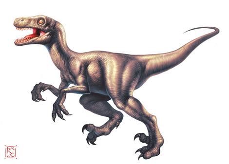 gd_beckermayer_velociraptor