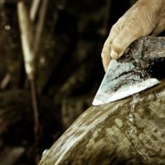 Contabilidade on-line: um machado cego?