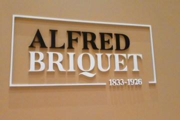 Alfred Briquet (1833-1926)