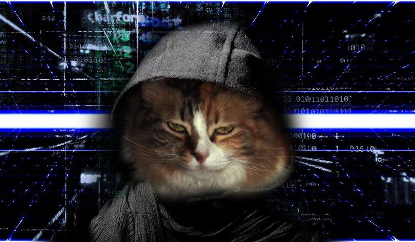 Caramell hacker
