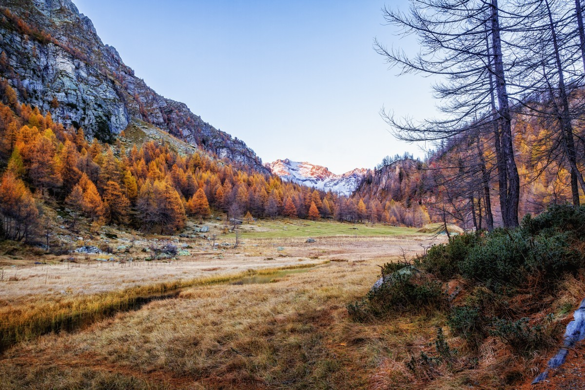 fall colors at alpe severo