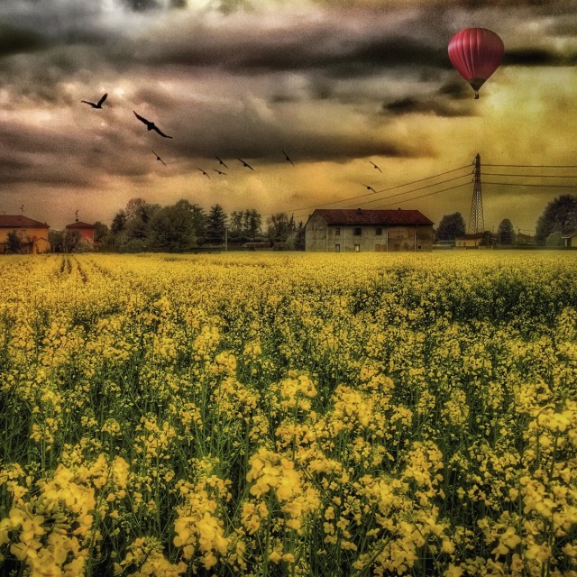 countryscape with air balloon