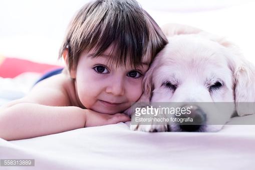 Gli animali domestici sono proprio come figli?