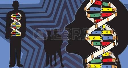 Conoscere la nostra storia genetica può aiutare a gestire meglio la nostra identità?