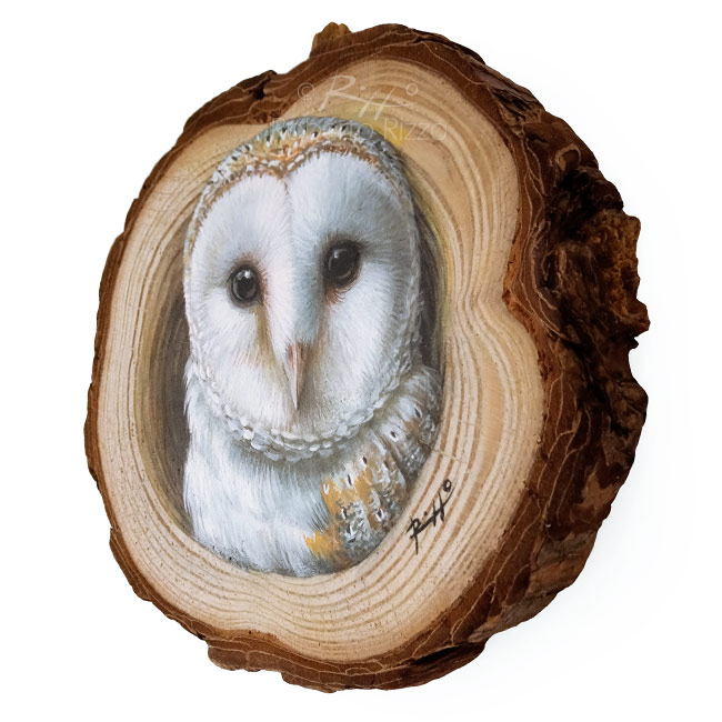 Barn Owls Lair A Wood Slice Owl Painting To Decorate